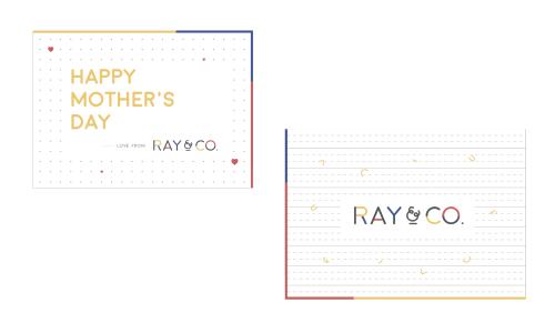 ray-6-02